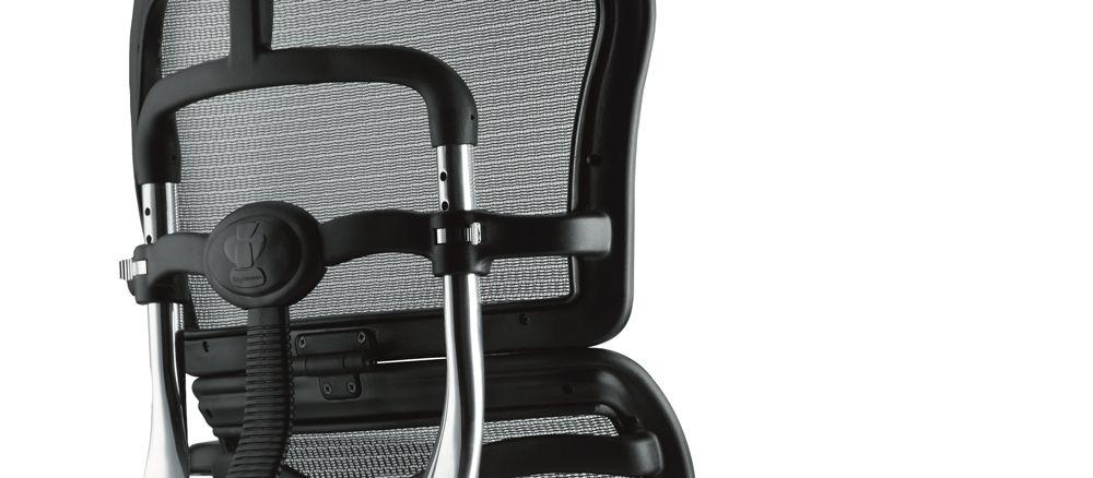 Эргономичное компьютерное кресло Comfort Seating Ergohuman Standart спинка
